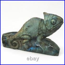 Chameleon Sculpture Natural Labradorite Lizard Figurine Crystal Healing Ornament