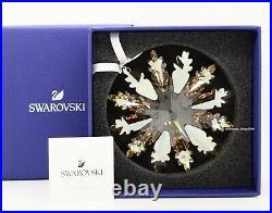 New Swarovski Sparkle Crystal Winter Star Ornament Display Original Box 5464857
