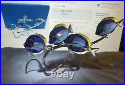 Swarovski Crystal Figurines School Of Surgeon Fish Scuba Blue
