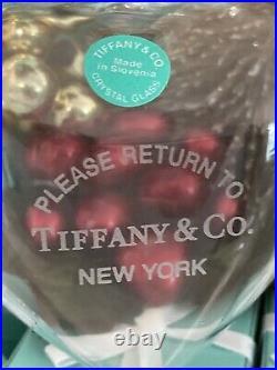Tiffany&Co RTT Puffy Heart Ornament Clear Crystal Glass Christmas Tree Holiday